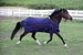 EOUS Lightweight Pony Turnout